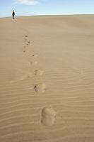 Girl walking on dunes, Farewell Spit, New Zealand