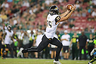 Tampa, FL - September 2, 2016: Towson Tigers wide receiver Christian Summers (25) catches a pass during game between Towson and USF at the Raymond James Stadium in Tampa, FL. September 2, 2016.  (Photo by Elliott Brown/Media Images International)