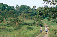 Uganda. Kayunga district. Nkokonjeru. Two men talk together while walking on a dirt road in the bushes. © 2004 Didier Ruef