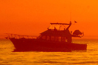 A boat motors south in Santa Monica Bay on Thursday, November 4, 2010.