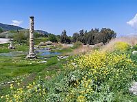 Temple or Artemis ruins, 1 of 7 Wonders, Selcuk, Turkey