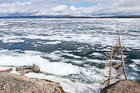 Yellowstone Lake in spring before ice out