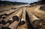 Logging Camp Deforestation Sarawak