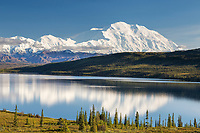 The Summit Of Mt. Denali Reflects In Wonder Lake, Denali National Park, Alaska.