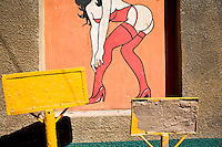 A picture on the wall of a strip club on Tuesday, July 15, 2008 in Nogales, Sonora, Mexico.