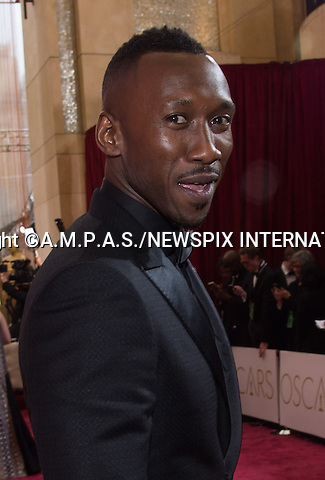 26.02.2017; Hollywood, USA: MAHERSHALA ALI<br /> attends The 89th Annual Academy Awards at the Dolby&reg; Theatre in Hollywood.<br /> Mandatory Photo Credit: &copy;AMPAS/NEWSPIX INTERNATIONAL<br /> <br /> IMMEDIATE CONFIRMATION OF USAGE REQUIRED:<br /> Newspix International, 31 Chinnery Hill, Bishop's Stortford, ENGLAND CM23 3PS<br /> Tel:+441279 324672  ; Fax: +441279656877<br /> Mobile:  07775681153<br /> e-mail: info@newspixinternational.co.uk<br /> Usage Implies Acceptance of Our Terms &amp; Conditions<br /> Please refer to usage terms. All Fees Payable To Newspix International