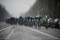 Dwars Door Vlaanderen 2013.peloton up the Nieuwe Kwaremont.