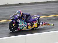 Oct 2, 2016; Mohnton, PA, USA; NHRA pro stock motorcycle rider L.E. Tonglet during the Dodge Nationals at Maple Grove Raceway. Mandatory Credit: Mark J. Rebilas-USA TODAY Sports