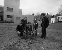 1976 - Schoolboys planting trees Ardscoil Ris (K18)