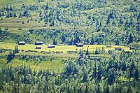 Svenskmoen, setervoller i Skarvene og Roltdalen nasjonalpark, på TT-ruta mellom Schulzhytta i Selbu og Ramsjøhytta i Tydal. Bak, fjellet Fongen, 1441 moh. Foto: Bente Haarstad Svenskmoen.