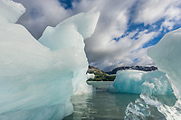 Stranded icebergs in Nellie Jauan Lagoon, Prince William Sound, southcentral, Alaska.