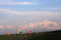 Against a Mont Blanc backdrop. Through daily contact with bees, nature and the weather, the beekeeper is particularly knowledgeable about the environment..High in the mountains the flowering period is short but rhododendron, white clover, epilobium, bramble and raspberry will produce excellent honey..