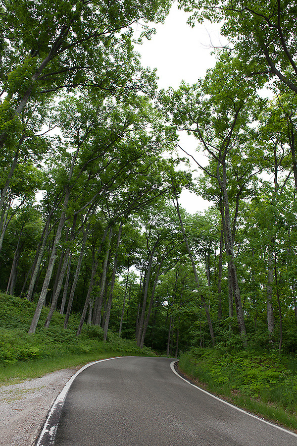 Tunnel of Trees Scenic Heritage Route in summer, northwest Michigan near Harbor Springs, MI, USA