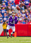 19 October 2014: Minnesota Vikings cornerback Marcus Sherels returns a punt for 11 yards to close out the first quarter against the Buffalo Bills at Ralph Wilson Stadium in Orchard Park, NY. The Bills defeated the Vikings 17-16 in a dramatic, last minute, comeback touchdown drive. Mandatory Credit: Ed Wolfstein Photo *** RAW (NEF) Image File Available ***