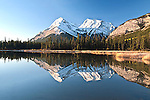 Bighorn Wildlands, Alberta - Canada