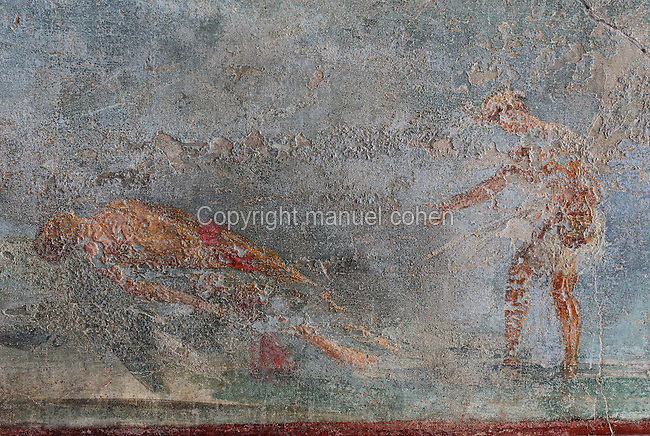 Detail of the fresco panel of the fall of Icarus, with Icarus' dead body on the ground, in the triclinium of the Casa del Sacerdos Amandus, or House of the Priest Amandus, Pompeii, Italy. The fresco is in the Third Style of Roman wall painting, 20–10 BC, characterised by an ornamental elegance in figurative and colourful decoration. Pompeii is a Roman town which was destroyed and buried under 4-6 m of volcanic ash in the eruption of Mount Vesuvius in 79 AD. Buildings and artefacts were preserved in the ash and have been excavated and restored. Pompeii is listed as a UNESCO World Heritage Site. Picture by Manuel Cohen