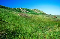Brackley Beach, Prince Edward Island National Park, Prince Edward Island, Canada
