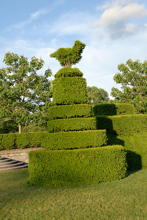 Longwood Gardens near Philadelphia. Topiary..Philadelphia, Pennsylvania, PA USA.  Photo copyright Lee Foster, 510-549-2202, lee@fostertravel.com, www.fostertravel.com.  Photo 379-30851