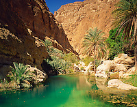 Green Pool in Wadi Shab, Sultanate of Oman, Canyons in Oman's desert mountains, Water colored by limestone springs, date palms