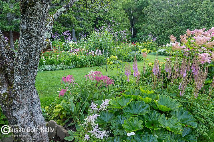 Thuya Garden in Northeast Harbor, Maine, USA