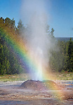 The Yellowstone landscape is varied, ranging from thermal pools and beautiful waterfalls and canyons to green valleys.