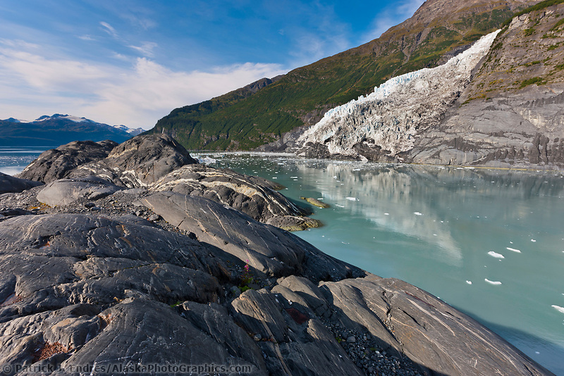 Tidewater face of Cascade glacier and icebergs floating in Barry Arm, Chugach National Forest, Prince William Sound, southcentral, Alaska.