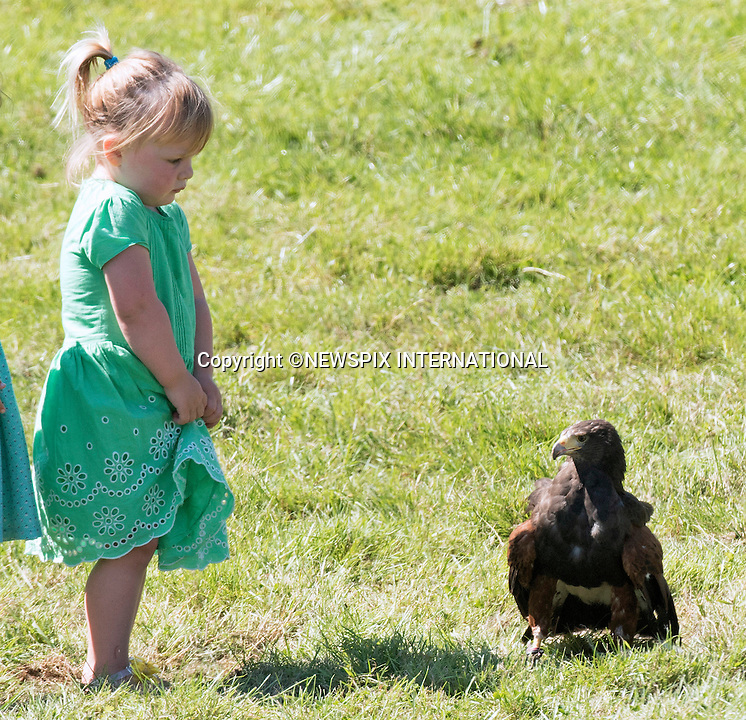 Mia Tindall Falcon Encounter, Gatcombe