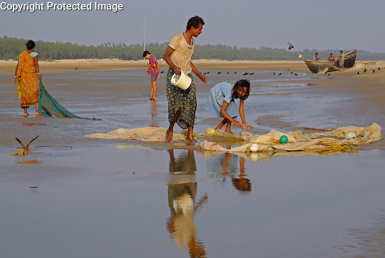 At low tide you can walk three kilometres out down the beach to the edge of the sea on Odisha's beaches in eastern India on the Bay of Bengal. Chandipur beach is especially popular.