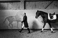 Switzerland. Canton Fribourg. Vuadens. Centre Equestre Les Kà. Classical dressage. Alain Devaud and his horse Jericho, an Andalusian horse, also known as the Pure Spanish Horse or PRE (Pura Raza Española). The painting on the wall is from the french artist and painter Jean-Louis Sauvat. Classical dressage evolved from cavalry movements and training for the battlefield, and has since developed into the competitive dressage seen today. Classical riding is the art of riding in harmony with, rather than against, the horse.12.02.17 © 2017 Didier Ruef