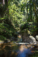A shade-covered stream and rocks at the Hawa'ii Tropical Botanical Garden, Onomea, Big Island of Hawai'i.
