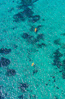 Aerial View, Sea kayaking, Florida Keys, Florida USA