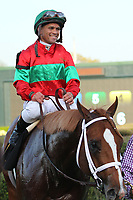 HOT SPRINGS, AR - MARCH 18: Jockey Javier Castellano aboard Malagacy #6 in the winners circle after winning the Rebel Stakes race at Oaklawn Park on March 18, 2017 in Hot Springs, Arkansas. (Photo by Justin Manning/Eclipse Sportswire/Getty Images)