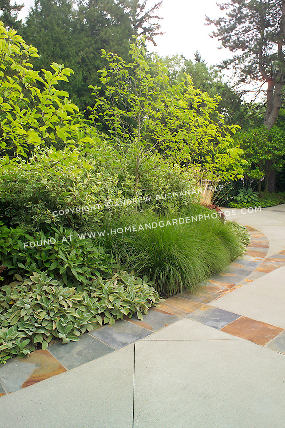 Df001277 garden border driveway edge for Ornamental grass edging