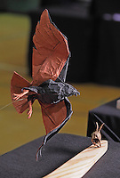 Detail of hawk and jackrabbit origami designed and folded by Bernie Peyton, California, USA.