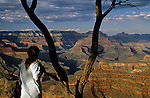South Rim Grand Canyon sunset light on rock formations with woman holding on to tree limb looking out over canyon Arizona State