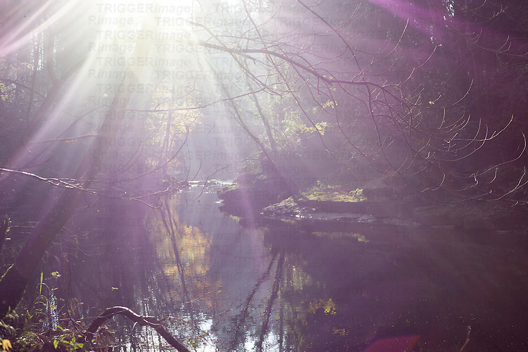 View along a river with strong backlight and lens flare