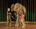 London, UK. 18.05.2016. Regent's Park Open Air Theatre presents RUNNING WILD, by Michael Morpurgo, in an adapttion by Samuel Adamson. the production is directed by Timothy Sheader and Dale Rooks, design is by Paul wills and lighting design by Paul Anderson. Picture shows: Oona the Elephant (as herself), Ava Potter (as Lilly). Photograph © Jane Hobson.