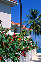 Tropical resort, San Pedro, Ambergris Caye, Belize<br />