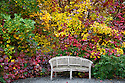 WA08871-00..WASHINGTON - Bench at the edge of the Perennial Border Garden area of the Bellevue Botanical Garden.