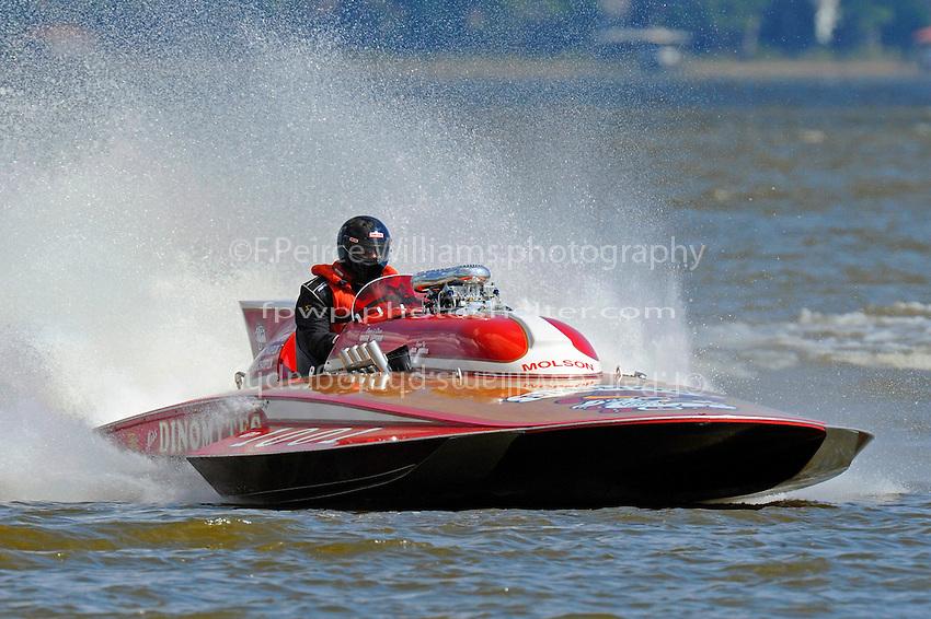 "Tom D'Eath, GP-1001 ""Miss Dinomytes"" (1986 Grand Prix class Lauterbach hydroplane)"