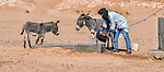A nomad gives water to donkeys from a well in the desert.