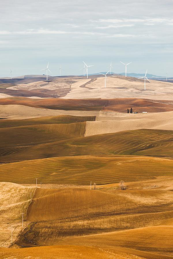Windmills 3 - фото 10