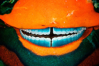 The teeth of a parrotfish upclose.