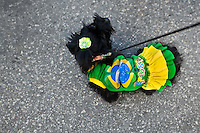 A Cairn Terrier dog, dressed in a fancy costume imitating Brazilian flag, takes part in the Blocao pet carnival show at Copacabana beach in Rio de Janeiro, Brazil, 12 February 2012.