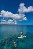 A woman standup paddles around a honu (green sea turtle) in the calm waters of Waimea Bay, O'ahu.