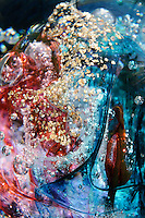Gold flakes and bubbles swirling through blue and red glass, a fine art abstract done in micro photography.