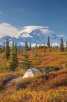 Tents at the Wonder Lake campground and Mt. Denali, Denali National Park, Alaska.