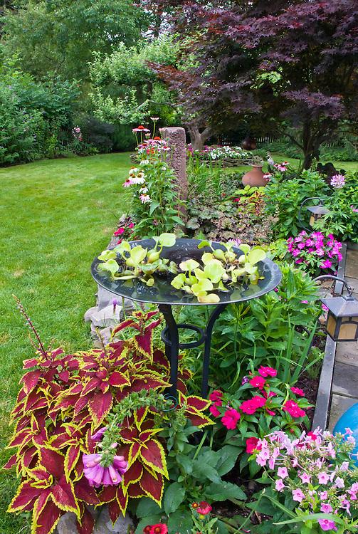 colorful backyard garden with birdbath water garden annuals and mixed