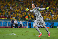 Brazil goalkeeper Julio Cesar celebrates his sides second goal by David Luiz