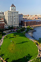 Brooklyn Bridge Park, Main Street Section, Riverview Lawn,  Dumbo, Brooklyn, New York City, New York, USA